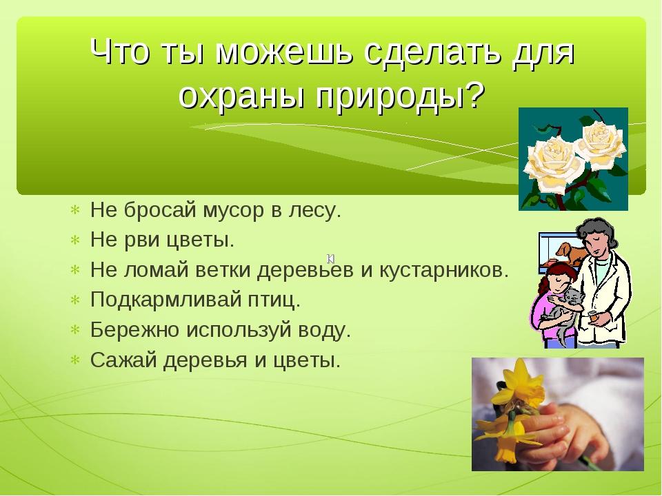 Не бросай мусор в лесу. Не рви цветы. Не ломай ветки деревьев и кустарников....