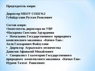Председатель жюри: Директор МБОУ СОШ №2 Губайдуллин Рустам Разилевич Состав ж