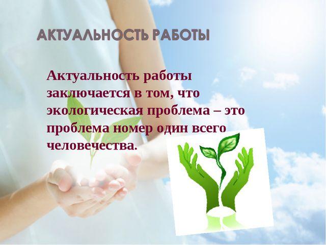 Актуальность работы заключается в том, что экологическая проблема – это проб...