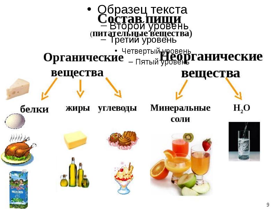 Из чего состоит наша пища?