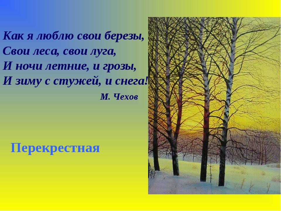 Как я люблю свои березы, Свои леса, свои луга, И ночи летние, и грозы, И зиму...