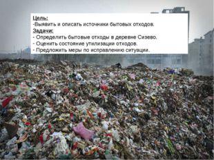 Цель: Выявить и описать источники бытовых отходов. Задачи: Определить бытовые