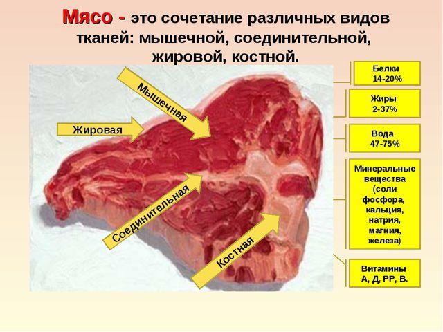 Мясо - это сочетание различных видов тканей: мышечной, соединительной, жирово...