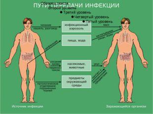 3. Период основных проявлений болезни По мере развития инфекционного заболева