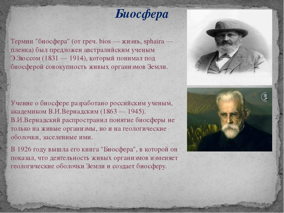 "Биосфера Термин ""биосфера"" (от греч. bios — жизнь, sphaira — пленка) был пред..."