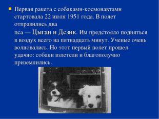 Первая ракета с собаками-космонавтами стартовала 22 июля 1951 года. В полет о