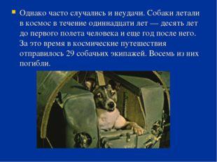 Однако часто случались и неудачи. Собаки летали в космос в течение одиннадцат