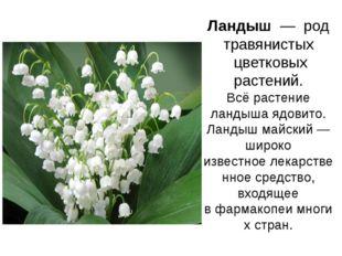 Ландыш— род травянистых цветковых растений. Всё растение ландыша ядовито.