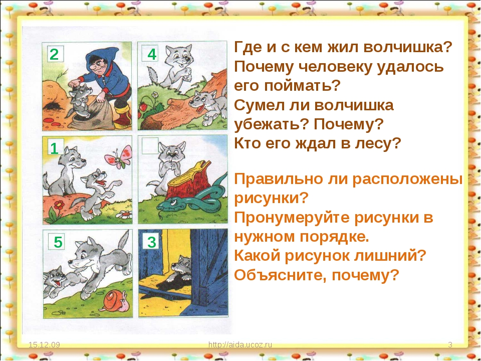 15.12.09 http://aida.ucoz.ru * Где и с кем жил волчишка? Почему человеку удал...