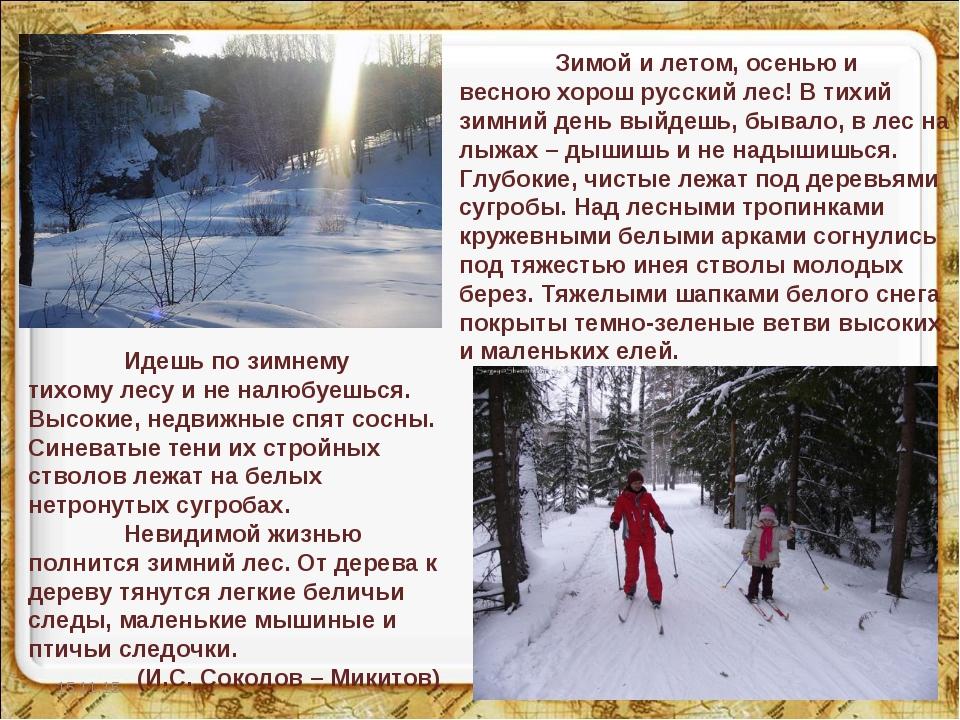 * * Зимой и летом, осенью и весною хорош русский лес! В тихий зимний день вы...