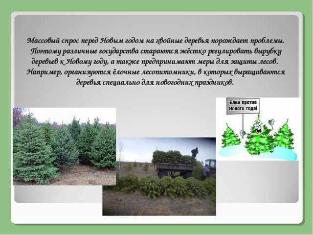 Массовый спрос перед Новым годом нахвойные деревьяпорождает проблемы. Поэто...