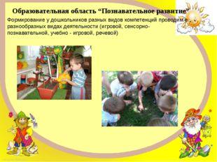 """Образовательная область """"Познавательное развитие"""" Формирование у дошкольников"""