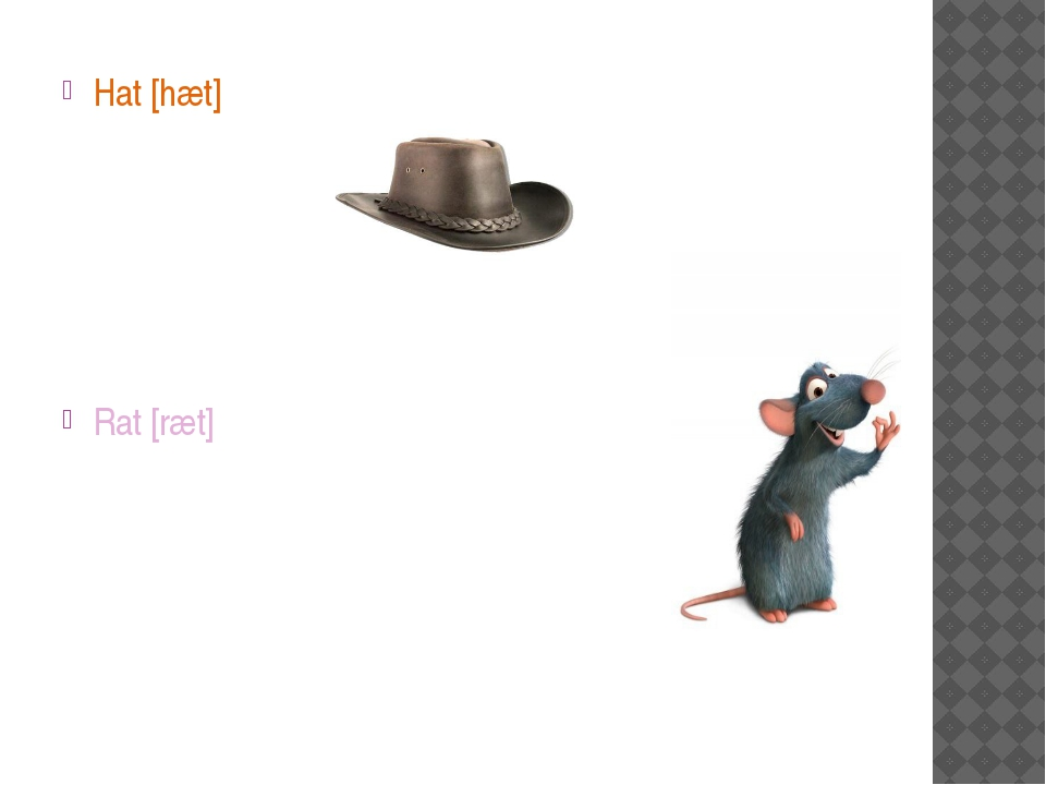 Hat [hæt] Rat [ræt]