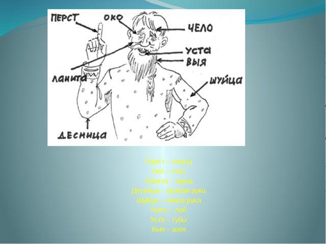 Перст – палец Око – глаз Ланита – щека Десница – правая рука Шуйца – левая р...