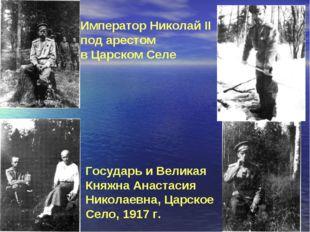 Император Николай II под арестом в Царском Селе Государь и Великая Княжна Ана