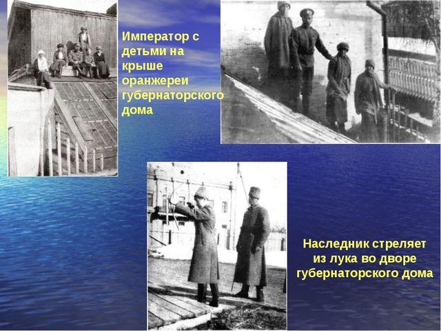 Император с детьми на крыше оранжереи губернаторского дома Наследник стреляет...
