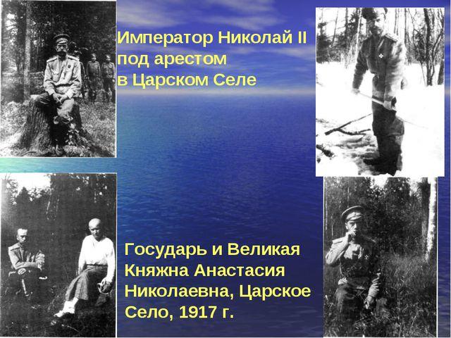Император Николай II под арестом в Царском Селе Государь и Великая Княжна Ана...