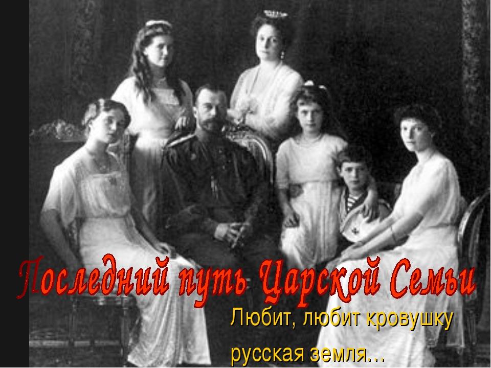 Любит, любит кровушку русская земля…