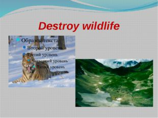 Destroy wildlife