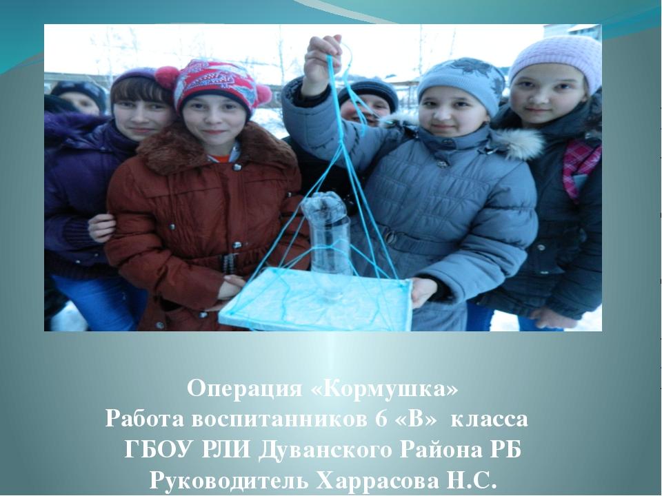 Операция «Кормушка» Работа воспитанников 6 «В» класса ГБОУ РЛИ Дуванского Рай...