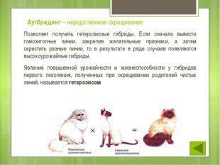 У животных чаще всего межвидовые гибриды стерильны, у них нарушается мейоз, ч