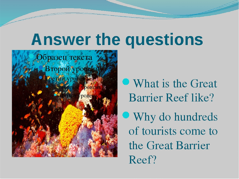 Answer the questions What is the Great Barrier Reef like? Why do hundreds of...