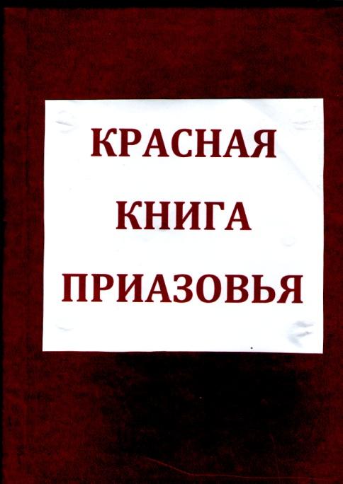 E:\Documents and Settings\1\Мои документы\Мои рисунки\img290.jpg