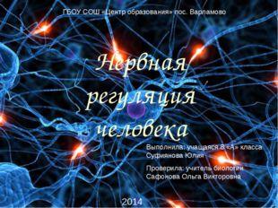 Нервная регуляция человека ГБОУ СОШ «Центр образования» пос. Варламово Выполн