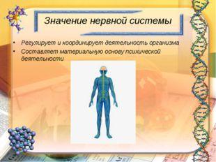 Значение нервной системы Регулирует и координирует деятельность организма Сос