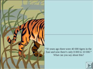 """50 years ago there were 40 000 tigers in the East and now there's only 8 000"