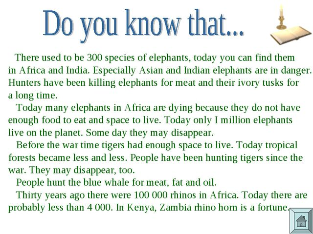 There used to be 300 species of elephants, today you can find them in Africa...