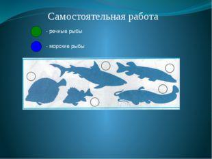 Самостоятельная работа - речные рыбы - морские рыбы
