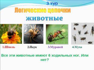 1.Шмель 2.Паук 3.Муравей 4.Муха Все эти животные имеют 6 ходильных ног. Или н