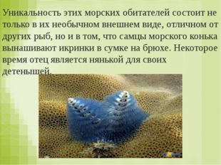 Кто выкармливает детёнышей молоком? а) птицы и ) звери б)рыбы 2.Какое слово п
