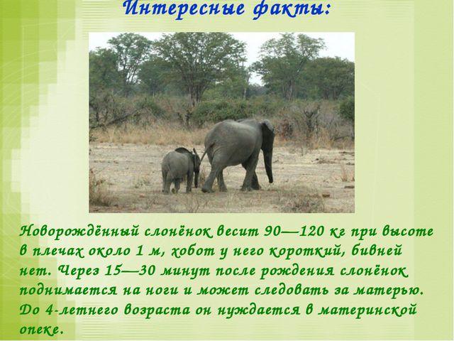 Мамы и дети: