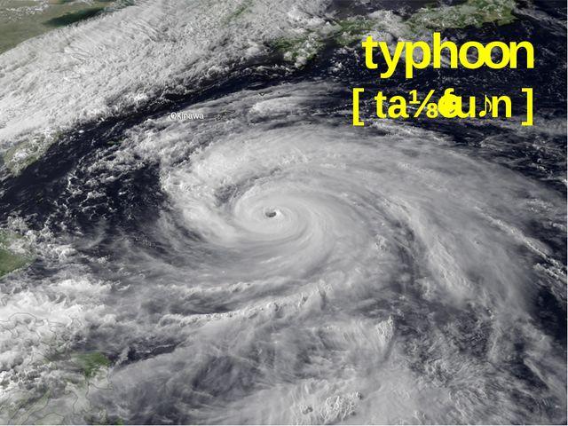 typhoon [taɪˈfuːn]
