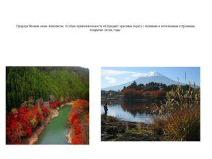 Природа Японии очень живописна. Особую привлекательность ей придают красивые