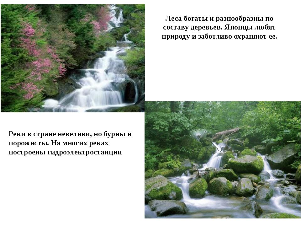 Леса богаты и разнообразны по составу деревьев. Японцы любят природу и заботл...