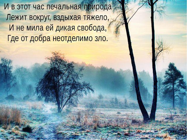 Заболоцкий Николай Алексеевич Учитель русского языка и литературы И в этот ча...