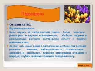 Остановка №2. Изучение первоцветов. Цель: изучить на учебно-опытном участке б