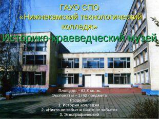 ГАУО СПО «Нижнекамский технологический колледж» Историко-краеведческий музей