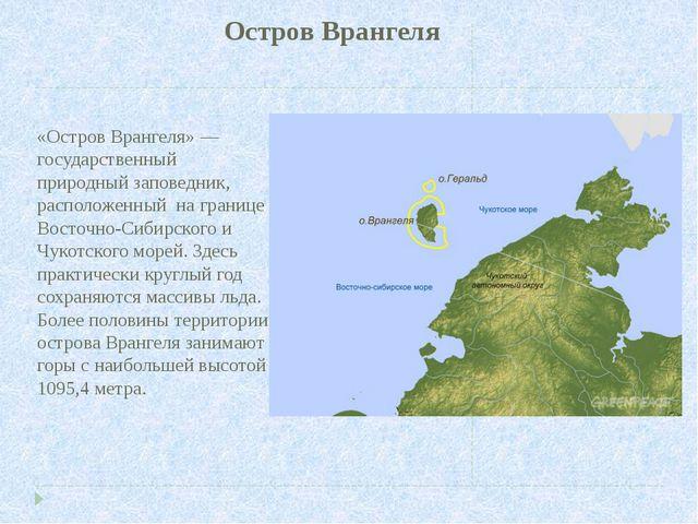 Остров Врангеля «Остров Врангеля» — государственный природный заповедник, рас...