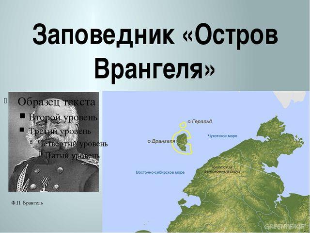 Заповедник «Остров Врангеля» Ф.П Ф.П. Врангель