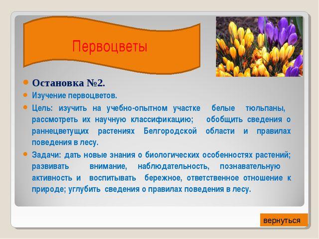 Остановка №2. Изучение первоцветов. Цель: изучить на учебно-опытном участке б...