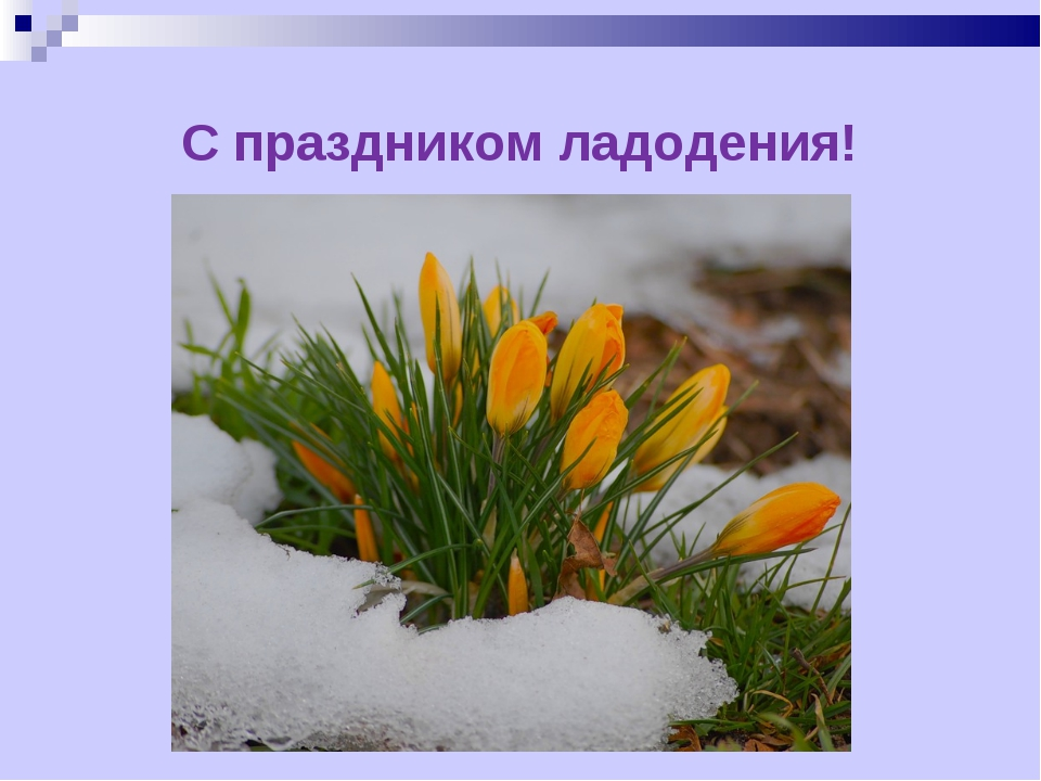 С праздником ладодения!