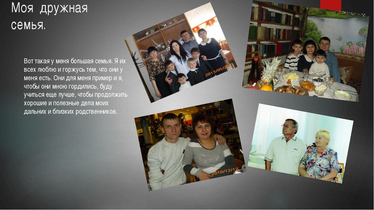 Вот такая у меня большая семья. Я их всех люблю и горжусь тем, что они у меня...