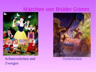 Märchen von Brüder Grimm Dornröschen Schneewittchen und Zwergen