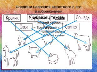 Соедини названия животного с его изображением