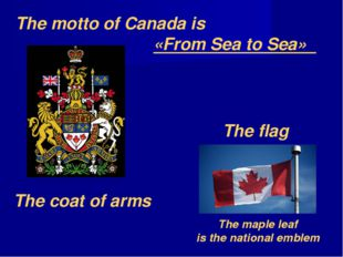 The coat of arms The flag The motto of Canada is «From Sea to Sea» The maple