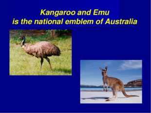 Kangaroo and Emu is the national emblem of Australia